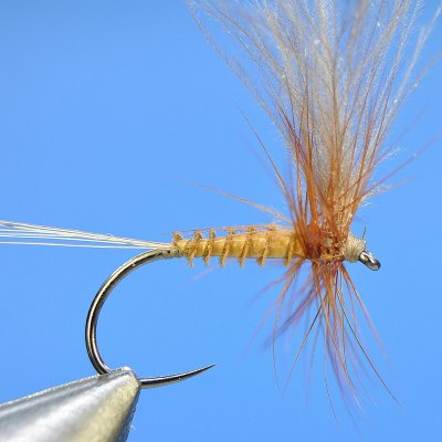 Dry Fly S18