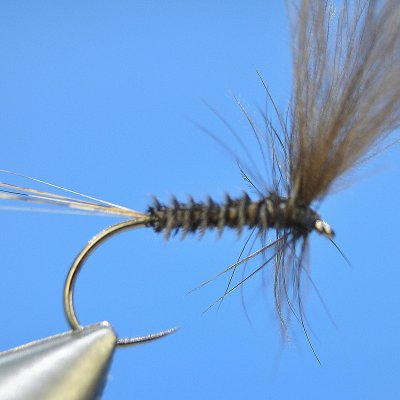 Dry Fly S23