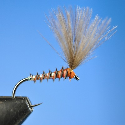 Dry Fly S124