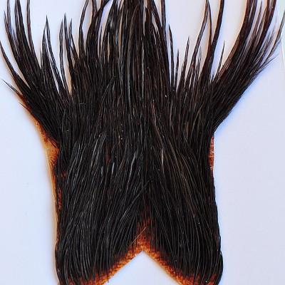 Genetic cock tops - brown