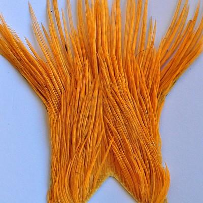 Genetic cock tops - amber