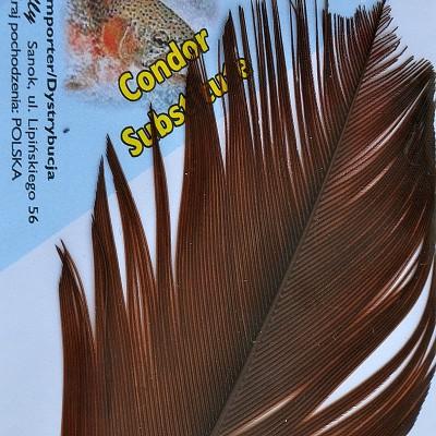 copy of Condor Sub. - brown