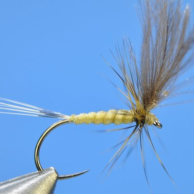 Dry Fly S36