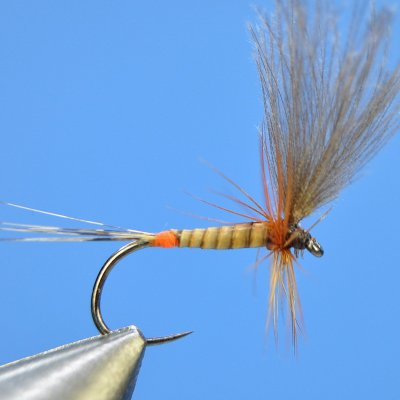 Dry Fly S40