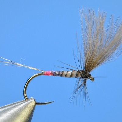 Dry Fly S42