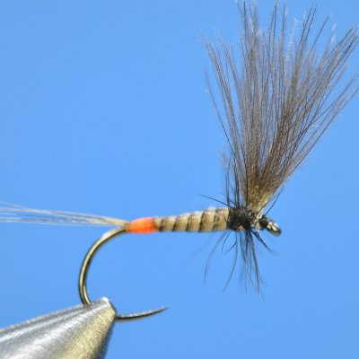 Dry Fly S44