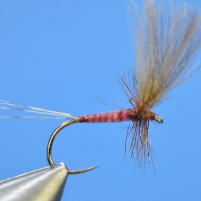 Dry Fly S43
