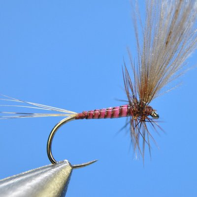 Dry Fly S49