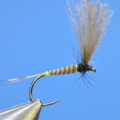 Dry Fly S54