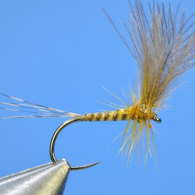 Dry fly S56