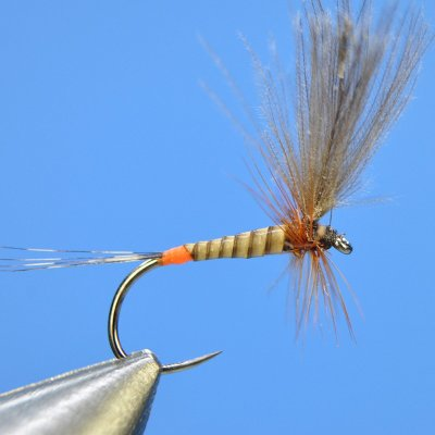 Dry Fly S59