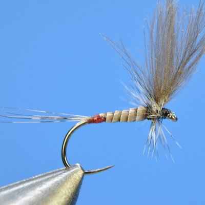 Dry Fly S60