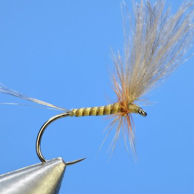 Dry Fly S61