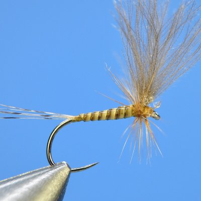 Dry Fly S62