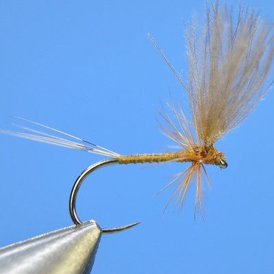 Dry Fly S66