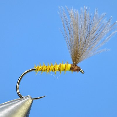 Dry Fly S81