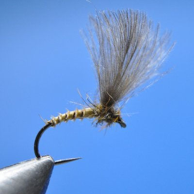Dry Fly S94