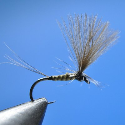 Dry Fly S109