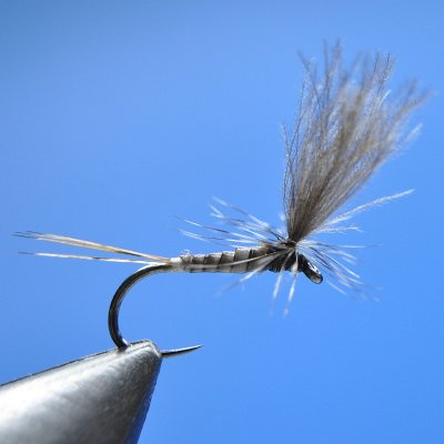 Dry Fly S110