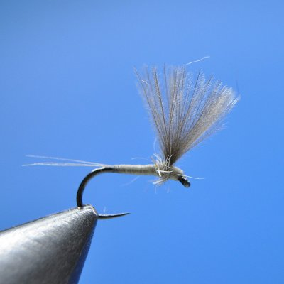 Dry Fly S112