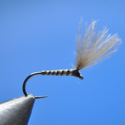 Dry Fly S116