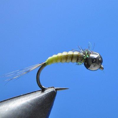 top fly N 10