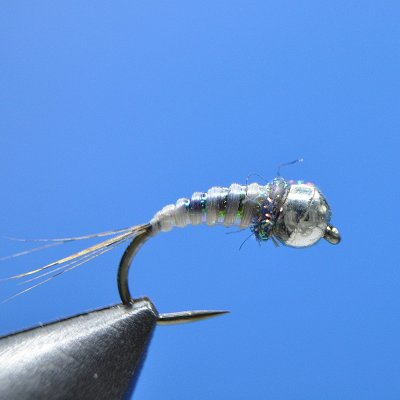 top fly N.15