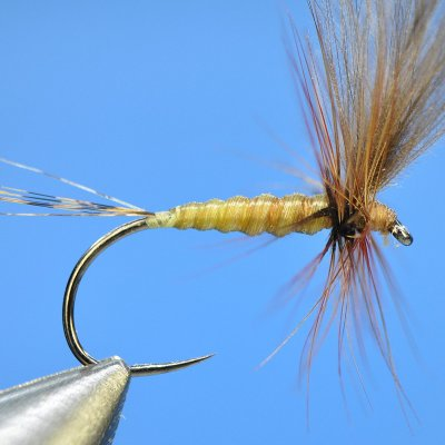 Dry Fly S13
